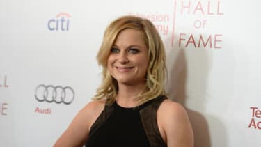 Amy Poehler teams up with brother for new show