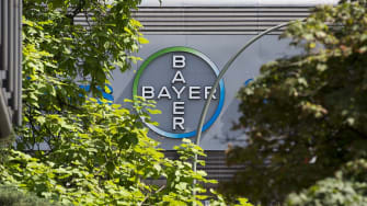 Bayer offers $62 billion for Monsanto