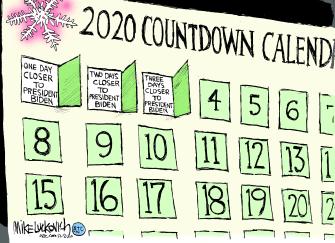 Political Cartoon U.S. Biden advent calendar