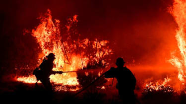 Firefighters battle the Bobcat fire.