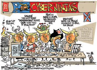 Political Cartoon U.S. arizona recount trump