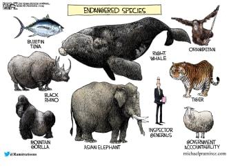 Political Cartoon U.S. inspector general firings trump endangered species