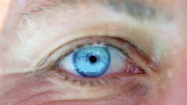 The DNA test that predicts hair and eye color