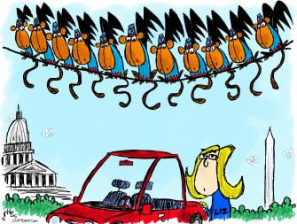 Political Cartoon U.S. liz cheney gop