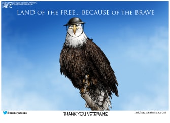 Editorial Cartoon U.S. Veterans Day