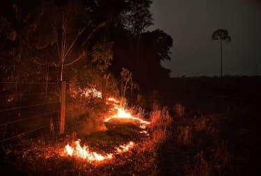 Amazon Fire.