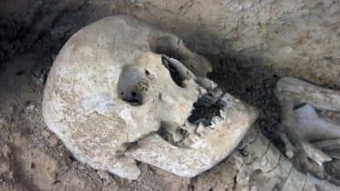Ancient skulls reveal history of human lactose tolerance
