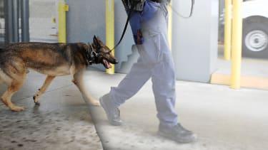 A border patrol guard.