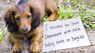 Seth Meyers tackles the niche genre of dog-shaming