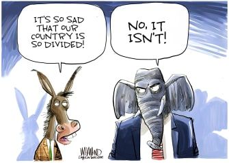 Political Cartoon U.S. Divided States Of America