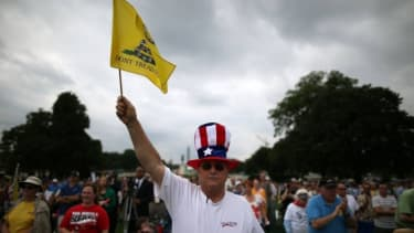Al Teague of Myrtle Beach, S.C., at a Tea Party rally in front of the U.S. Capitol on June 17.