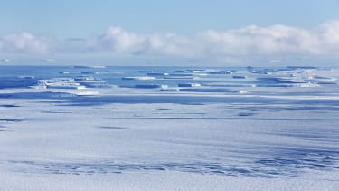 Scientists believe climate change is behind large pieces of ice breaking off.