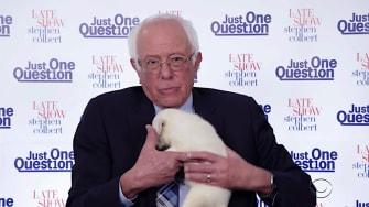 Bernie Sanders cuddles a puppy