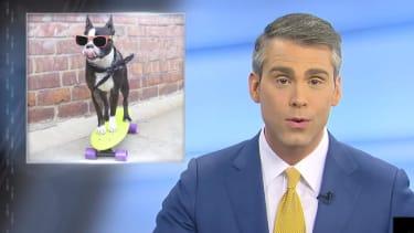 Jimmy Fallon gets real NBC news anchors to read fake good news