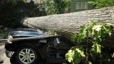 A downed tree damages a truck after a powerful overnight storm in the Washington, D.C. area on June 30 in Falls Church, Va. The storm has left more than 3 million people in the region without