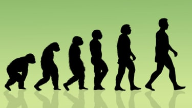 Scientists discover that humans and Neanderthals overlapped for 'much longer than we thought'