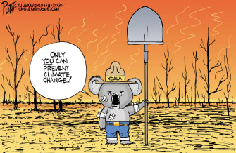 Editorial Cartoon World Australia wildfires koala
