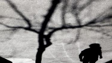 A shadow.