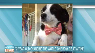 A dog wearing one of Darius Brown's bow ties.