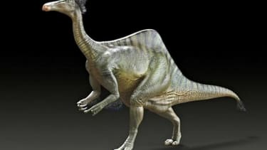 Scientists figure out why this dinosaur was so ugly