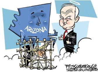 Political Cartoon U.S. Arizona McCain Trump McSally loss