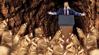 Trump in a cave