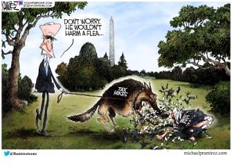 Political Cartoon biden taxes business