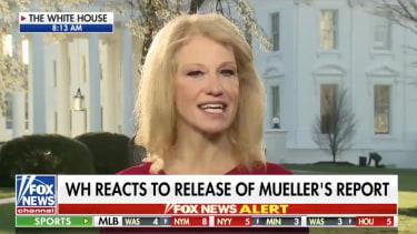 Kellyanne on Fox News.