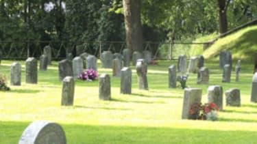 The SpongeBob cemetery ban