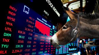 Donkey looks at stock exchange.