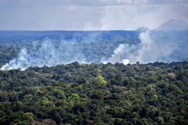 Forest burning in the Amazon.