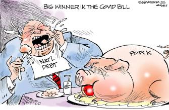 Editorial Cartoon U.S. covid stimulus pork