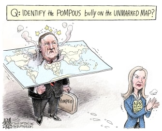 Political Cartoon U.S. Mike Pompeo Mary Louise Kelly NPR journalism interview maps bully