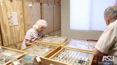 Couple donates insects.