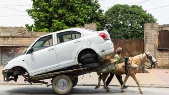 A horse pulling a car.