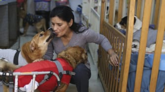 Sara Moran and two dogs in her shelter.