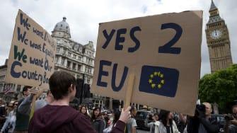 Pro-remain Brexit sign