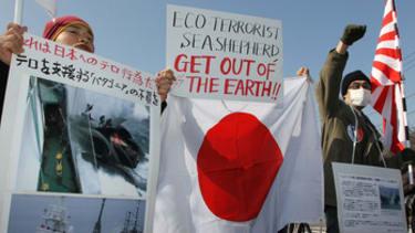 U.N. court orders Japan to halt whaling in the Antarctic