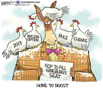 Political Cartoon U.S. Democrats SCOTUS