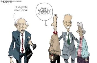Political Cartoon U.S. Sanders democratic revolution moderates older vote prefer Biden