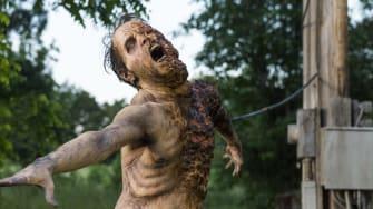 'The Walking Dead.'
