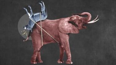 An elephant and a donkey.
