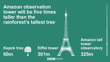Observation tower in the Amazon rainforest will monitor climate change
