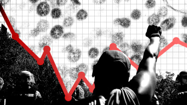 A graph, a protest, and coronavirus.
