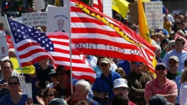 A Tea Party rally in Washington, DC.