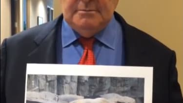 Newt Gingrich: Help me save this adorable sad polar bear