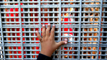 A child reaching for a San Diego border fence.
