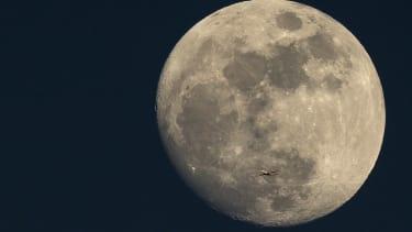 SpaceX moon trip.