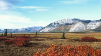 Alaska's Arctic National Wildlife Refuge