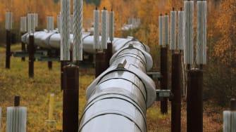 The Trans Alaska Pipeline System